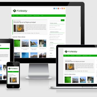 Website Design with 30 page website
